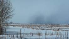 winter storm over the Wood River wetlands